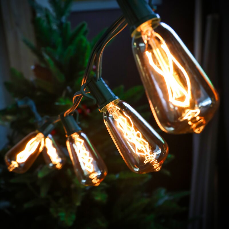Edison Style 10 Light Novelty String Lights