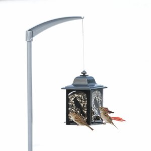 Universal Bird Feeder Pole