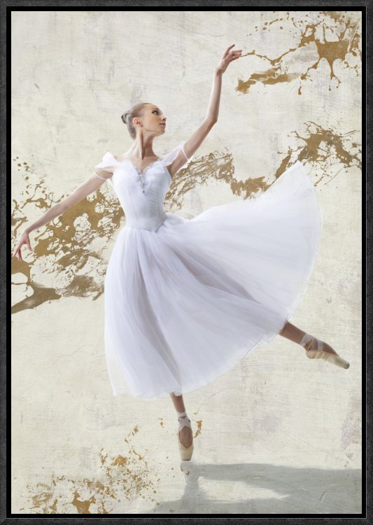 Global Gallery \'White Ballerina\' by Rizzardi Framed Graphic Art ...