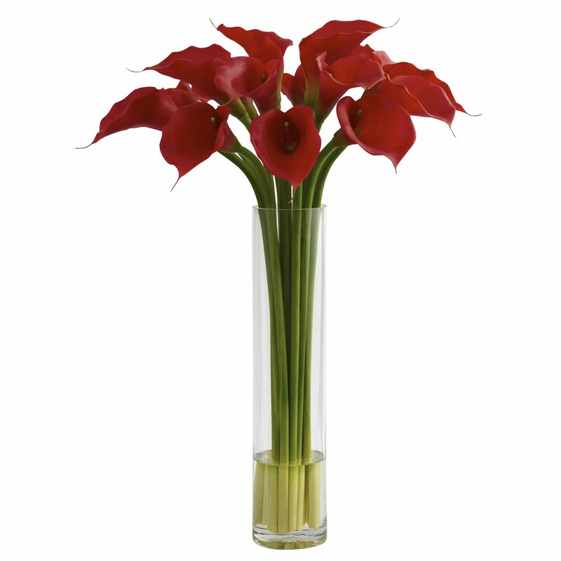 House Of Hampton Red Calla Lily With Large Cylinder Vase Reviews