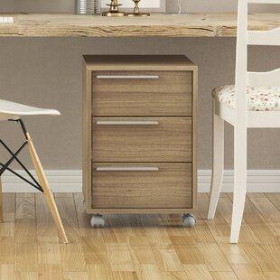 Saunders Storage Cabinets   Wayfair