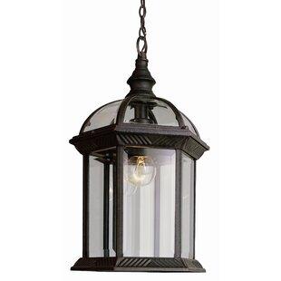 Powell 1 Light Outdoor Hanging Lantern