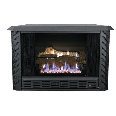 Gas & Propane Fireplaces You\'ll Love | Wayfair