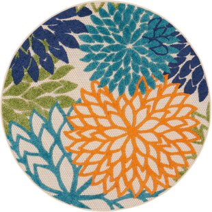 Round Outdoor Rugs You\'ll Love