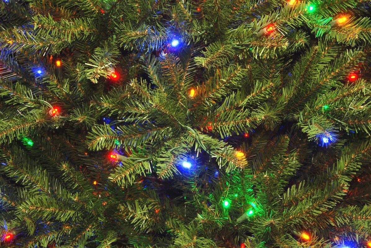 Catchy Collections of Christmas Tree With Multicolored Lights ...