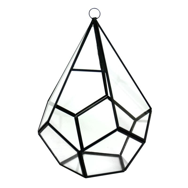 Cysexcel Glass Terrarium