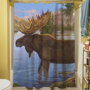 Majestic Moose Shower Curtain