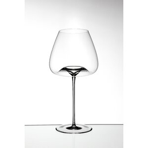 Vision 2 Piece Wine Glass Set