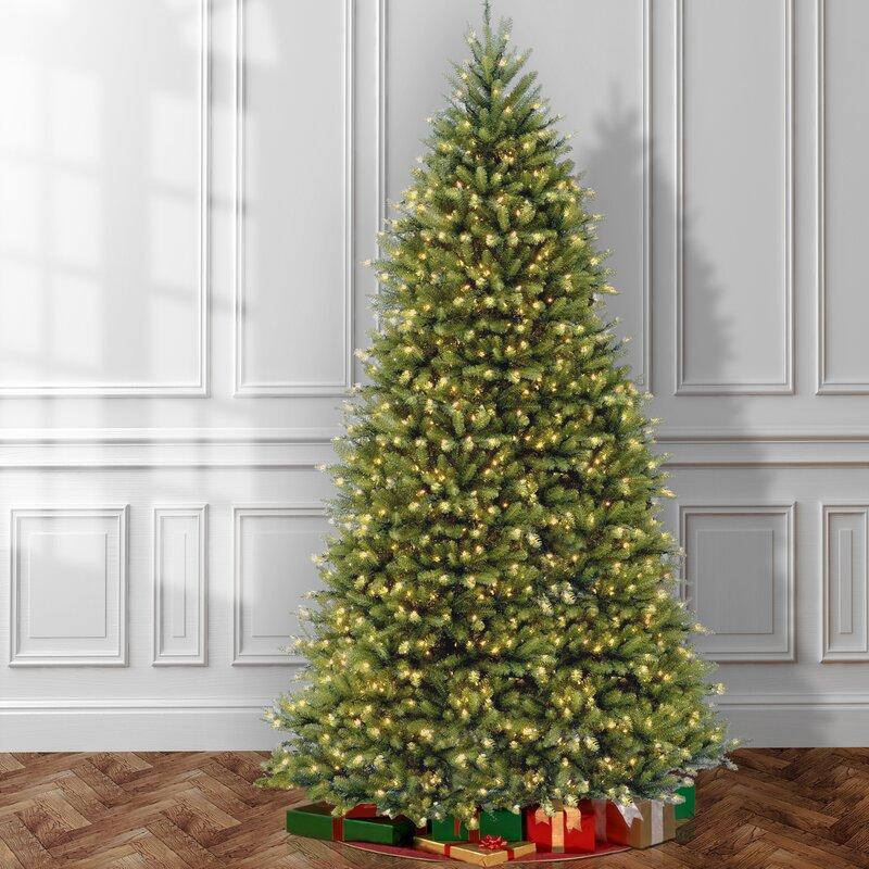 Mercer41 Fir 12' Hinged Green Artificial Christmas Tree with 1500 Clear Lights & Reviews | Wayfair
