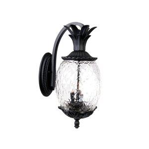 Kyra 3-Light Outdoor Wall Lantern