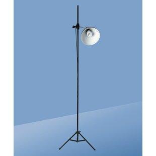 daylight floor lamp natural daylight daylight artist studio 866 company wayfair
