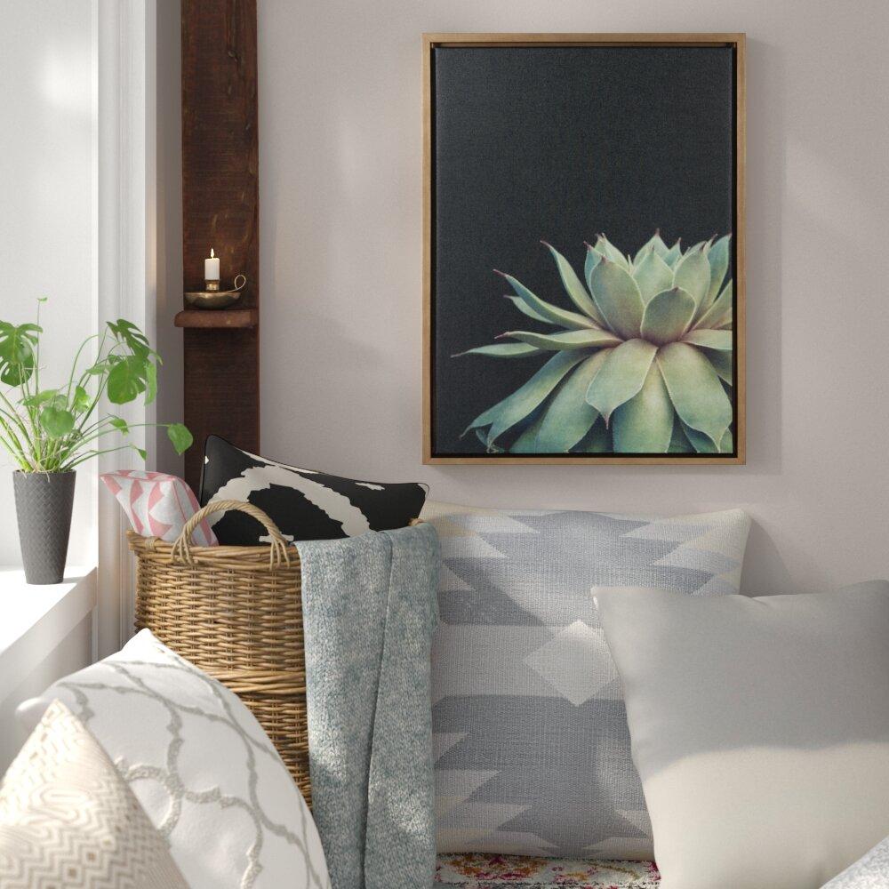 56c7b983963 Bungalow Rose  Sylvie Succulent  Framed Photographic Print on Canvas    Reviews