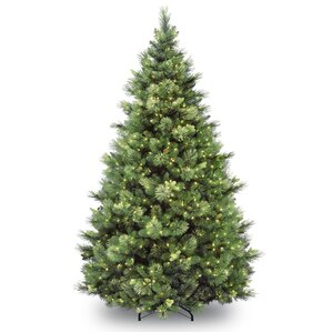 carolina 7u0027 green pine artificial christmas tree with 700 clear lights with stand