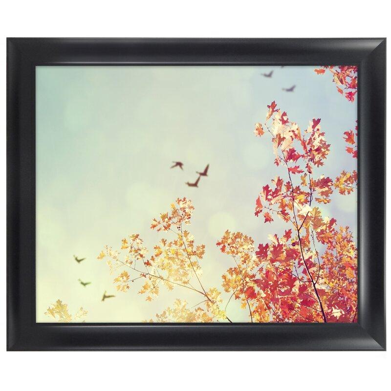 MCSIndustries Premium Wide Scoop Picture Frame | Wayfair
