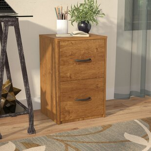 Charmant 2 Drawer File Cabinet