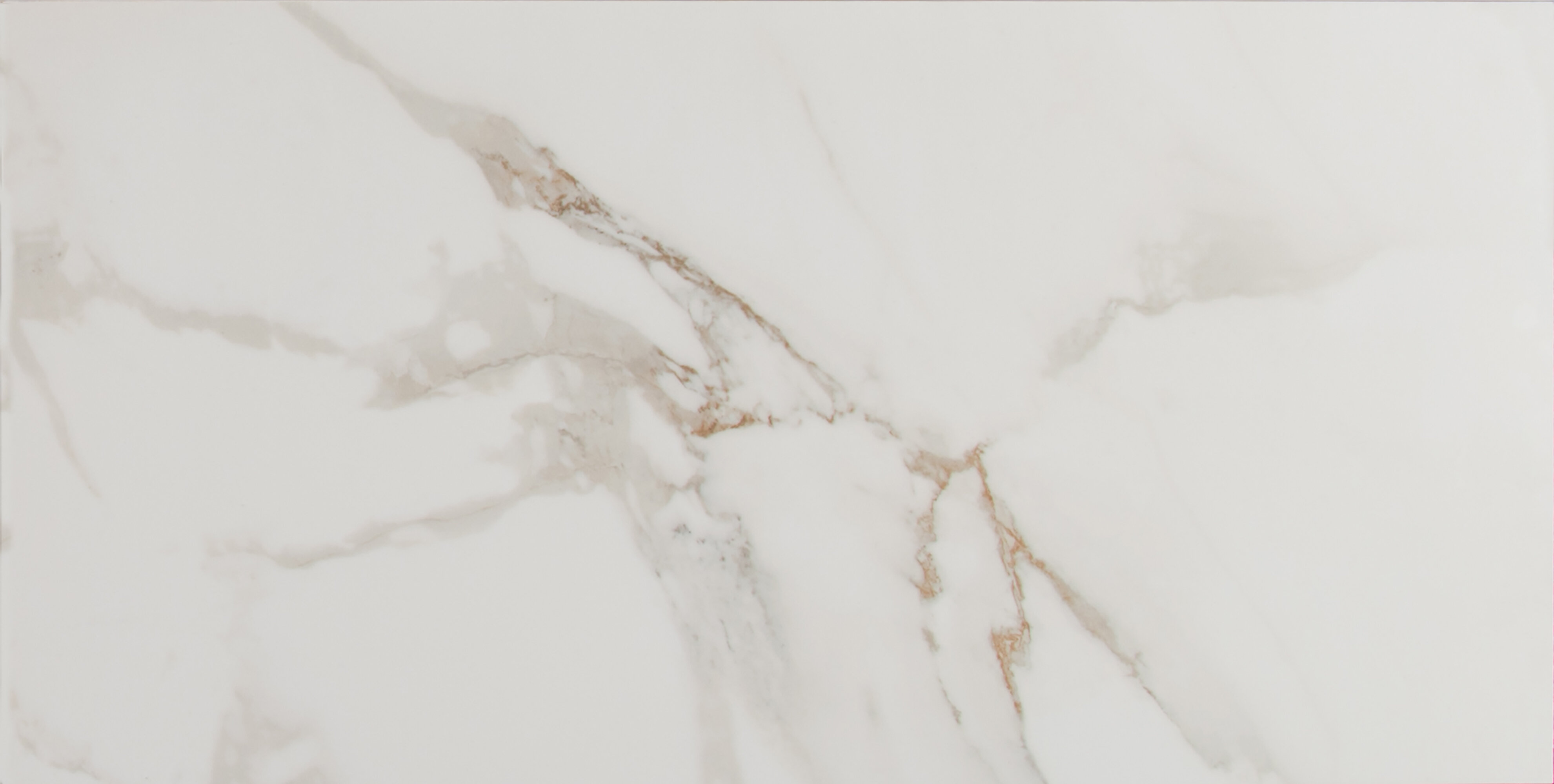 Bathroom tile youll love wayfair pietra carrara 12 x 24 porcelain field tile in white dailygadgetfo Images