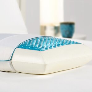 Bed Memory Foam and Hydraluxe Gel Pillow by Alwyn Home