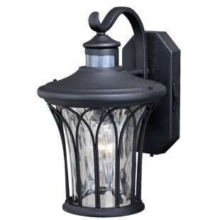 Motion sensor outdoor wall lighting youll love wayfair hylan outdoor wall lantern with motion sensor aloadofball Images