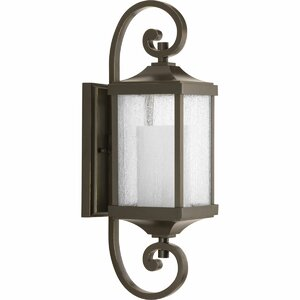 Aashish 1-Light Outdoor Wall Lantern