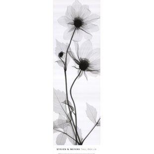 Tall Dahlia By Steven N Meyers Photographic Print