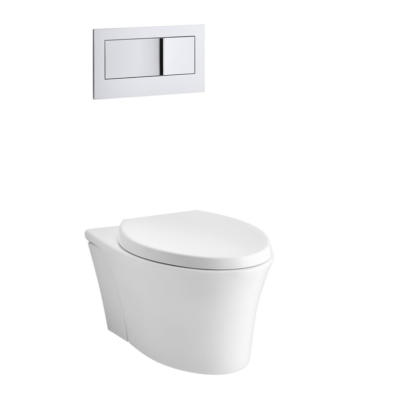 Wall Mount Toilets
