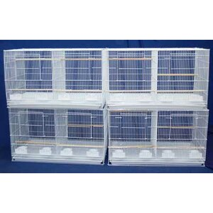 Lot of Four Medium Bird Cage with Divider