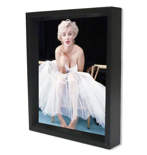 Ballerina Framed Art   Wayfair
