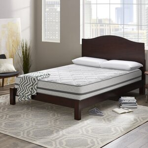 Wayfair Sleep 12