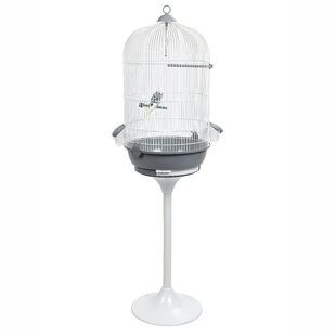 Bird Cages You'll Love in 2019 | Wayfair co uk