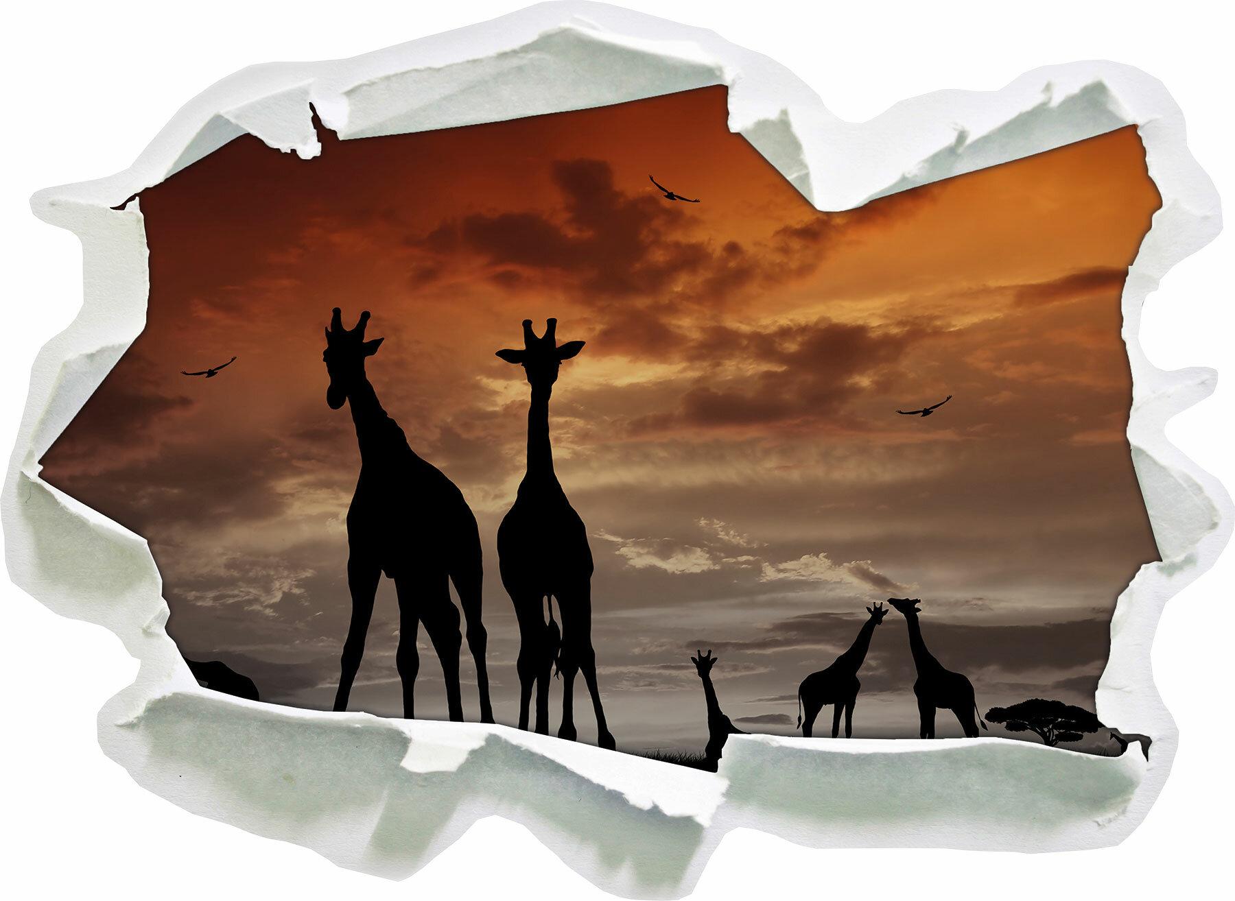 Pixxprint Wandtattoo Afrika Giraffen Im Sonnenuntergang Wayfair De