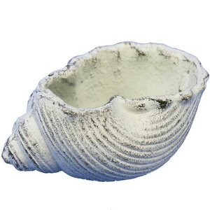 Triton Seashell Iron Votive