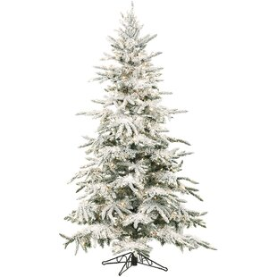 mountain pine 9 white artificial christmas tree with 800 led multi colored string lighting with stand and flocked branches