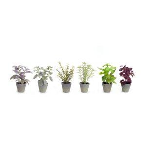 artificial herbs | wayfair.ca