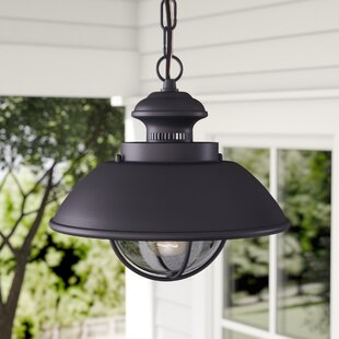 Inglewood 1 Light Outdoor Hanging Lantern
