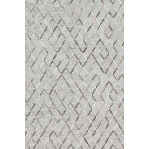 Dorado Hand-Woven Gray Area Rug