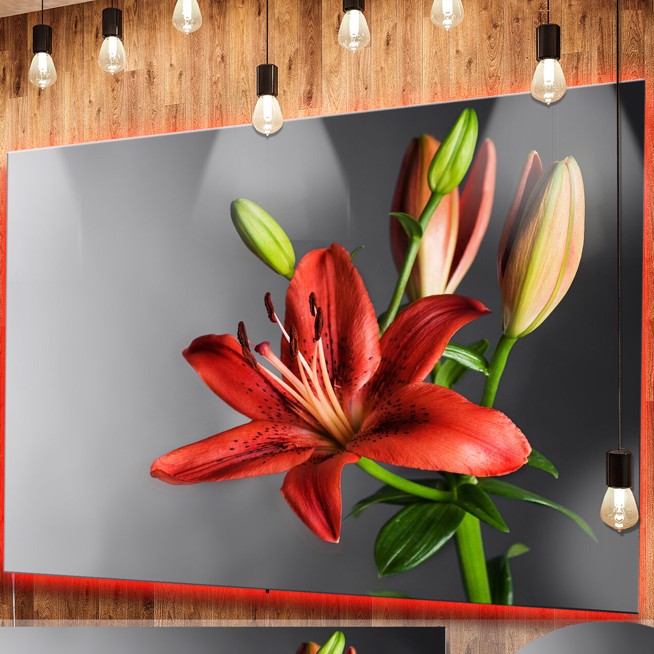 Designart cute red lily flower over black photographic print on designart cute red lily flower over black photographic print on metal wayfair izmirmasajfo