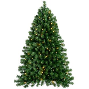 Flatback And Quarter Christmas Trees You Ll Love Wayfair Co Uk