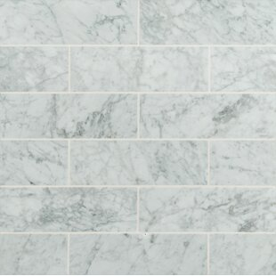 4 X 12 Honed Marble Tile In Arabeo Carrara