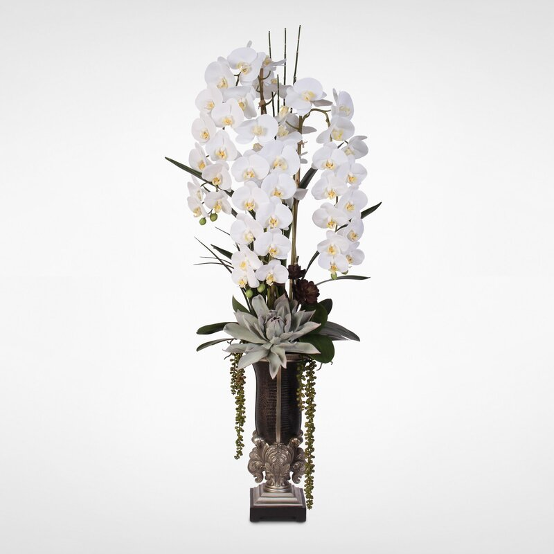 Astoria Grand Phalaenopsis Orchid And Artificial Succulents Floral