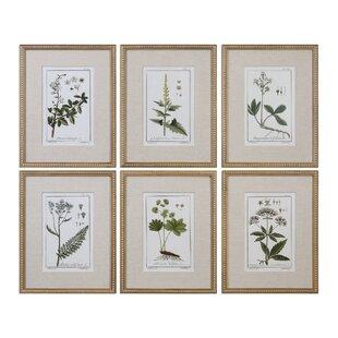 59e3af4ea73  Floral Botanical Study  6 Piece Framed Graphic Art Print Set on Wood in  Green