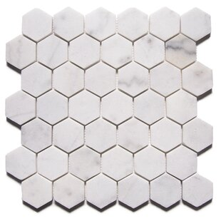 Carrara Marble Hexagon Tile Wayfair - 2 carrara marble hexagon floors