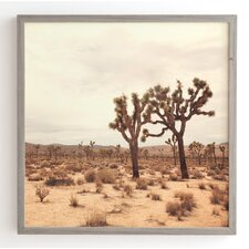 California Joshua Trees Framed Photographic Print