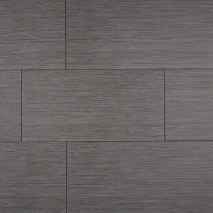 Focus Graphite 12 X 24 Porcelain Stone Look Field Tile In Gray