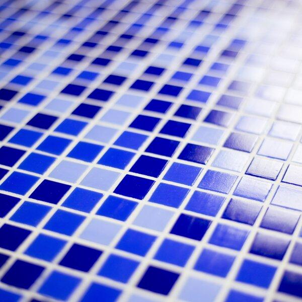 Modern & Contemporary Swimming Pool Tile | AllModern