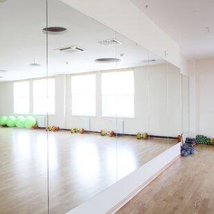 Dance studio mirrors wayfair