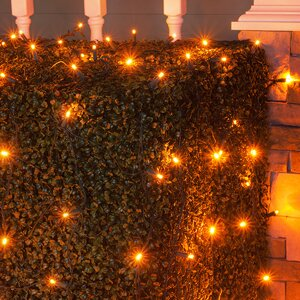 100 LED Christmas Net Light
