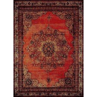 Indoor & Outdoor Oriental Rugs You\'ll Love   Wayfair