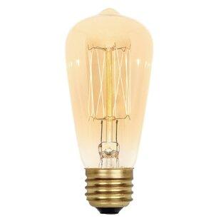 8 bulb vanity light wayfair 40w amber st15 light bulb aloadofball Gallery