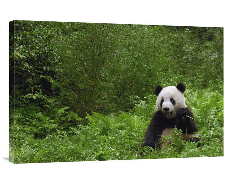 Wood Texture Print Cotton /& Polyester Canvas Fabric SB-03549-2-M
