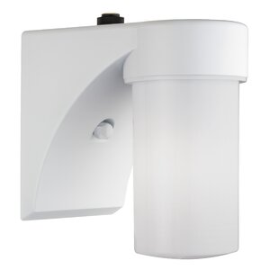 Cylinder 1-Light Outdoor Sconce